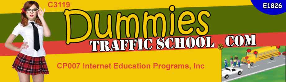 Dummies online traffic school